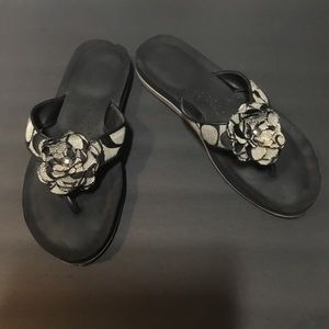 Noted Coach Sandals 6